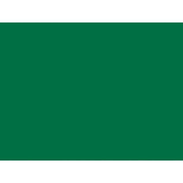 Вінсо Фарба акрилова,Spray 450ml.,темно-зелений,(MOSS GREEN/RAL6005) - 2